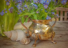 Forget Me Not Flowers Still Life  - cocoparisienne / Pixabay