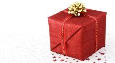 Elegantní noční košilky mohou být ideálním vánočním dárkem