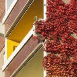Nepodceňte revitalizaci panelových domů a přenechte ji odborníkům