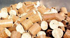 Dřevěné brikety využijete pro různá topidla