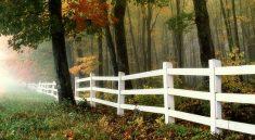 Oploťte svůj pozemek kvalitně a přepychově