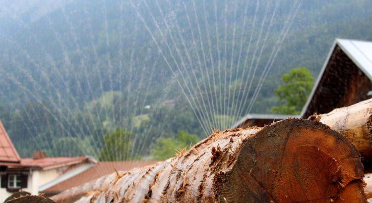 Wood Log Carpenter Irrigation  - bboellinger / Pixabay